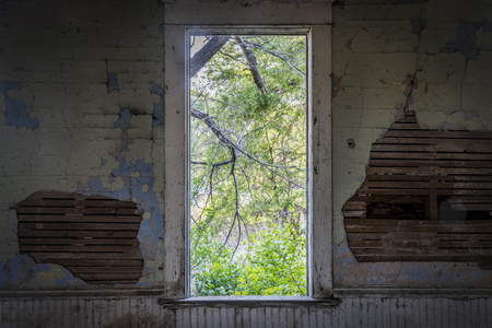 window view from an old abandoned schoolhouse in rural Nebraska