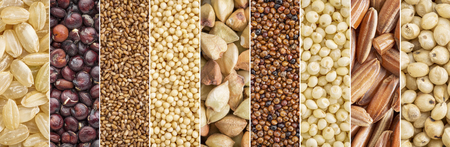 gluten free grains collection (brown rice, quinoa, teff, amaranth, buckwheat, kaniwa,millet, sorghum) - a collage image Banco de Imagens