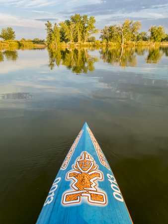 Fort Collins, CO, USA - August 23, 2017: Bow of racing stand up paddleboard by Starboard with the tiki  logo and lucky race number 0013 on a calm lake in late summer. Editöryel