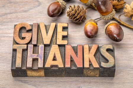 give thanks - Thanksgiving concept - text in vintage letterpress wood type printing blocks with cone and acorn decoration