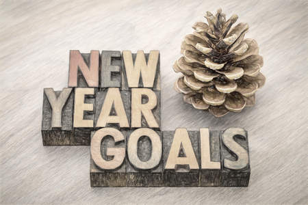 New Year goals  word abstract in vintage letterpress wood type with a pine cone, digital painting filter applied