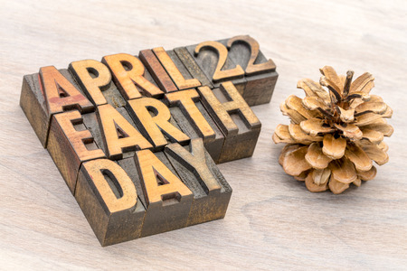 April 22 Earth Day - annual event celebrated to demonstrate support for environmental protection, word abstract in letterpress wood type with a pine cone. Stock Photo