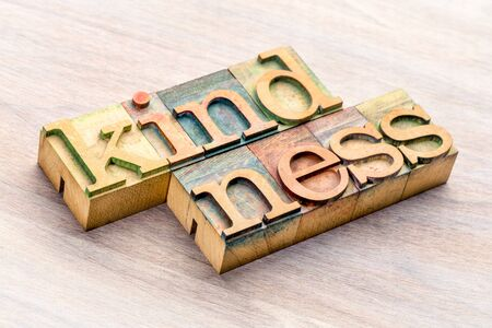 kindness word abstract in  letterpress wood type printing blocks stained by color inks
