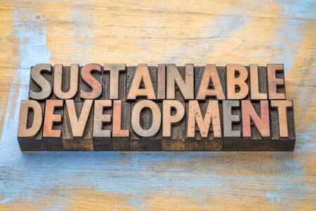 sustainable development - word abstract in vintage letterpress  wood type