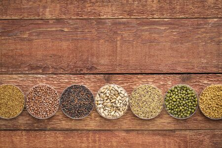 organic sprouting seeds in Petri dishes on rustic barn wood, from left - alfalfa, radish, broccoli, sunflower, red clover, mung bean, fenugreek.