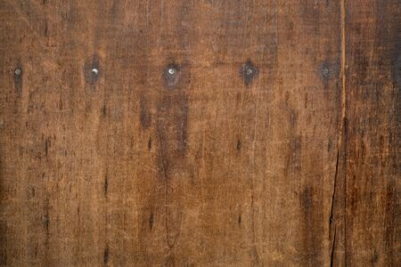 background texture of  weathered, scratched, grunge wood board with a row of nails