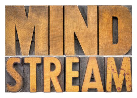 mind stream - isolated word abstract in vintage letterpress wood type blocks
