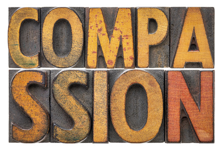 compassion - isolated word abstract in vintage letterpress wood type