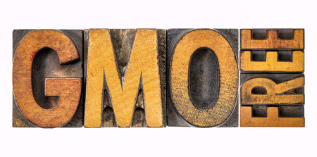 GMO (genetically modified organism) free banner - isolated word abstract in vintage letterpress wood type stained by inks Stock Photo