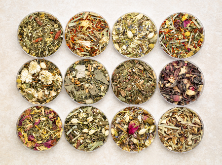collection of twelve herbal blend Chinese tea in round bowls (Petri dish), top view on a ceramic tile Stock Photo