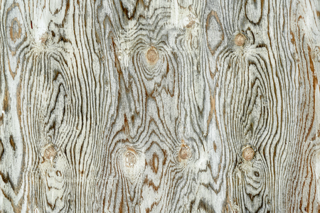 texture of weathered, white painted plywood with grain patterns and knots