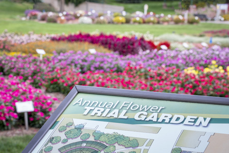 Fort Collins, CO, USA - September 16, 2015: Annual Flower Trial Garden at Colorado State University - information sign with flower bed in background.