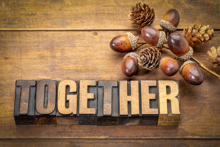 together word abstract in vintage letterpress wood type with a fall decoration