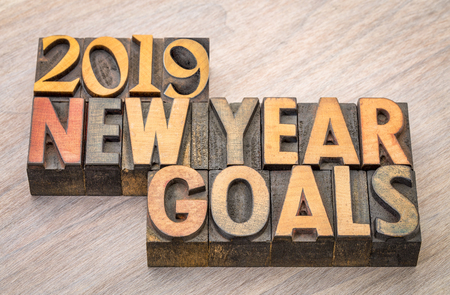 2019 New Year goals  word abstract in vintage letterpress wood type Stock Photo