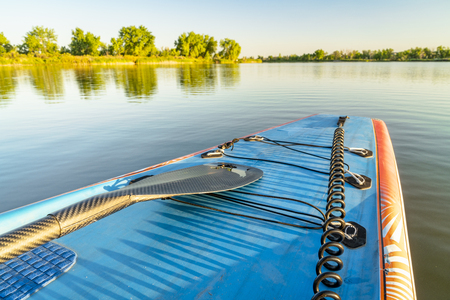 Stand up paddle board with bungees,  a paddle and a safety leash on a calm lake in summer scenery