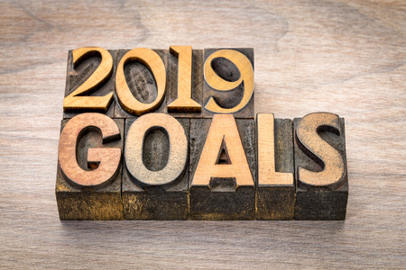 2019 goals banner - New Year resolution concept - text in vintage letterpress wood type printing blocks against grained wood Stock Photo