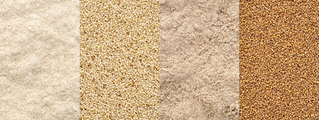 Gluten free teff grain and flour, ivory and brown variety Stock Photo