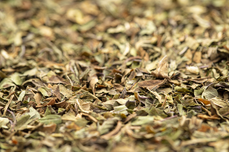 Background texture of organic loose leaf peppermint tea, selective focus Stock Photo