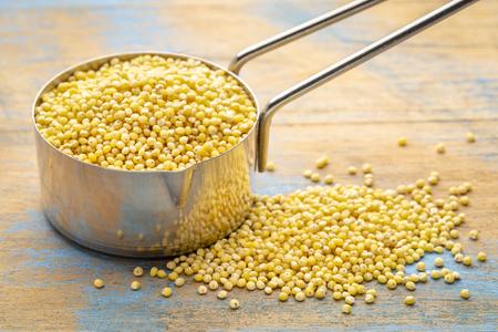 Gluten free millet grain in a metal measuring scoop (14 cup) against grunge wood
