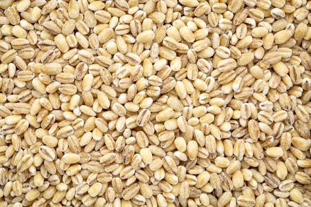 closeup background of pearl barley grain Stok Fotoğraf
