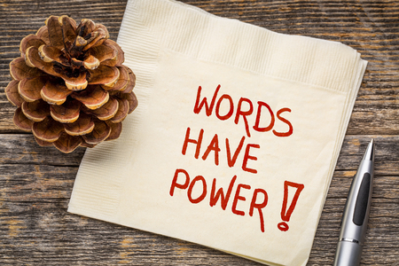 Words have power - handwriting on a napkin with a pine cone against rustic wood