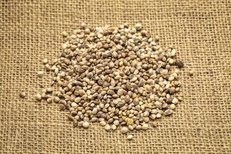 pilr of organic dried hemp seeds on burlap canvas