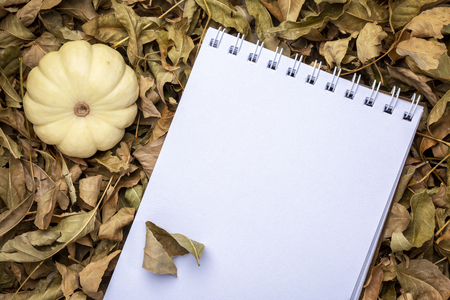 blank spiral sketchbook against dry fall leaves with ornamental gourd