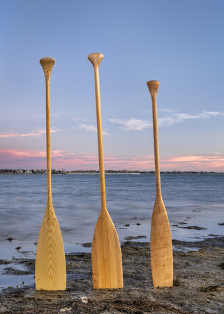 three wooden canoe paddles on a lake shore at dusk