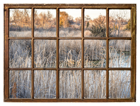 fall scenery in wetlands in northern Colorado as seen from a vintage sash window