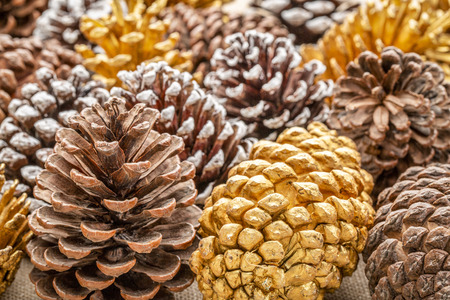 background of decorative pine cones - natural, gold and frosty white painted