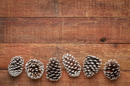 row of decorative, frosty white painted, pine cones on a weathered barn wood with a copy space