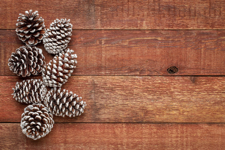 decorative, frosty white painted, pine cones on a weathered barn wood with a copy space