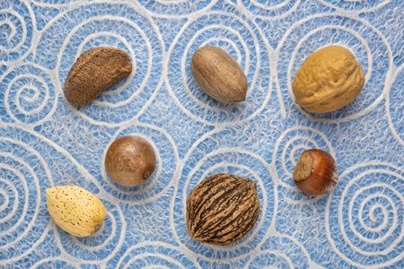 variety of nuts in shells (Brazilian, pecan, English walnut, hazelnut, black walnut, macadamia, almond) against Japanese lace paper with spiral pattern