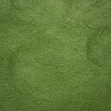 background of moss green Huun Mayan handmade paper created  by Mayan artisans throughout the Yucatan Peninsula of Mexico