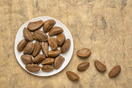 Brazilian nuts on a white plate against buckskin textured paper background with a copy space