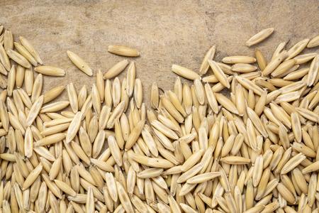 macro shot of oats (organic, whole groats) against textured bark paper