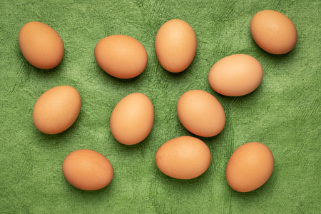 free-range large brown chicken eggs on textured green bark paper