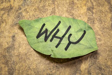 Warum Frage auf einer blattförmigen Haftnotiz gegen handgeschöpftes Rindenpapier?