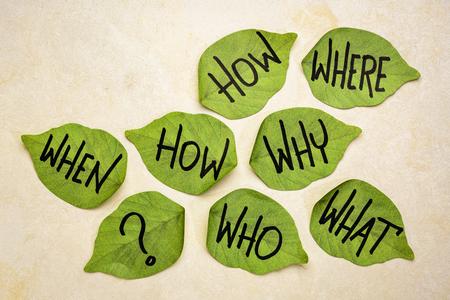 Entscheidungsfindungs- oder Brainstorming-Fragen - Handschrift auf grünen, blattförmigen Haftnotizen auf handgeschöpftem strukturiertem Papier Standard-Bild