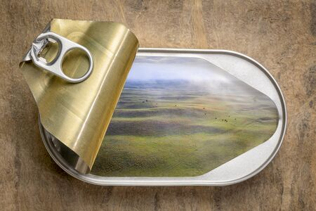 fresh spring landscape of hilly meadows  in an open tin can, top view against textures bark paper