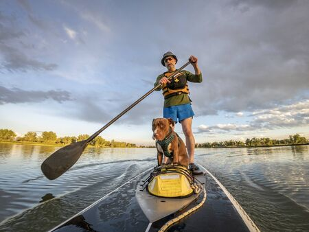 Senior male paddling stand up paddleboard with his pitbull dog on lake in Colorado, summer scenery
