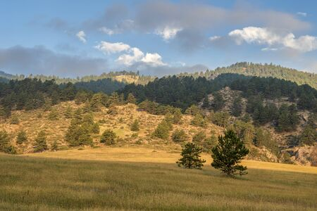 summer scenery of Rocky Mountains foothills, Lory State Park in northern Colorado Banco de Imagens