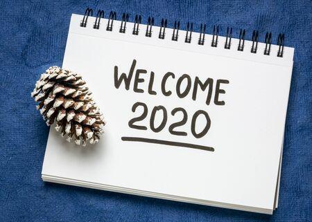welkom 2020-handschrift in schetsboek met een ijzige dennenappel, nieuwjaarsconcept