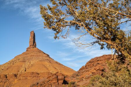 Castleton Tower framed by a juniper tree, iconic rock formation in Castle Valley near Moab, Utah. The Tower is world-renowned as a subject for photography and for its classic rock climbing routes.