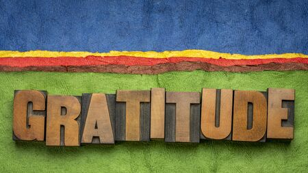 gratitude word in vintage letterpress wood type blocks against colorful bark paper abstract landscape, appreciation and being thankful concept