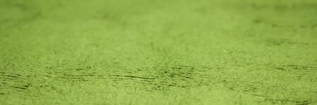 background and texture of green huun handmade paper with a selective focus, panoramic web banner