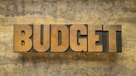budget word abstract in vintage letterpress wood type against textured bark paper, business and personal finance concept Stock Photo