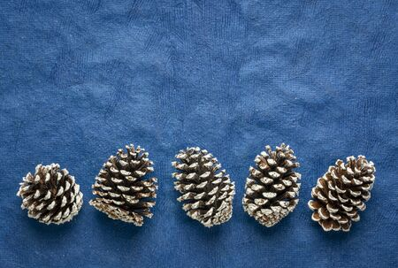 row of frosty decorative pine cones against blue textured bark paper with a copy space, winter holidays concept