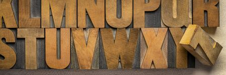 alphabet abstract in vintage letterpress wood type printing blocks, panoramic banner Foto de archivo