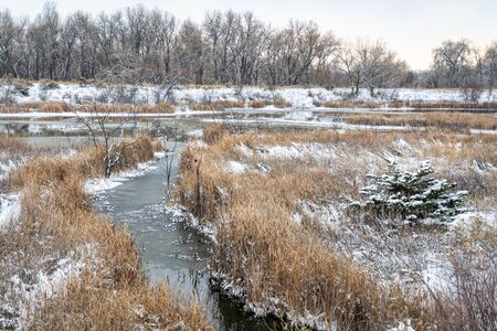 fall or winter scenery in one of natural areas in Fort Collins, Colorado along the Poudre River converted from gravel quarry